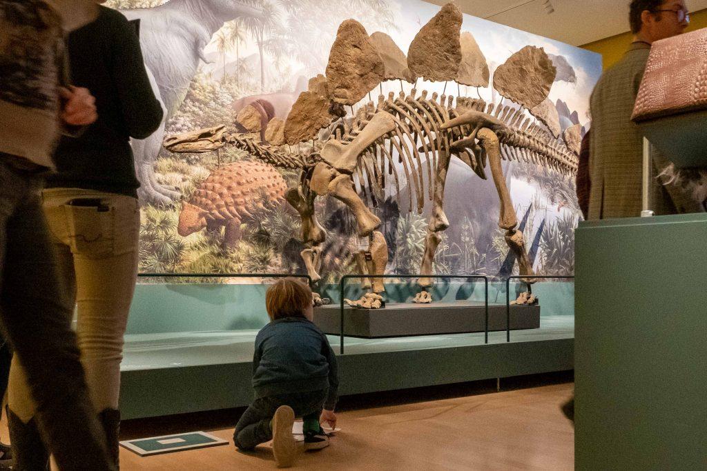 Dinomakers in Teylers Museum