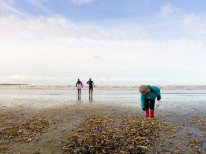 Schelpen zoeken op het strand