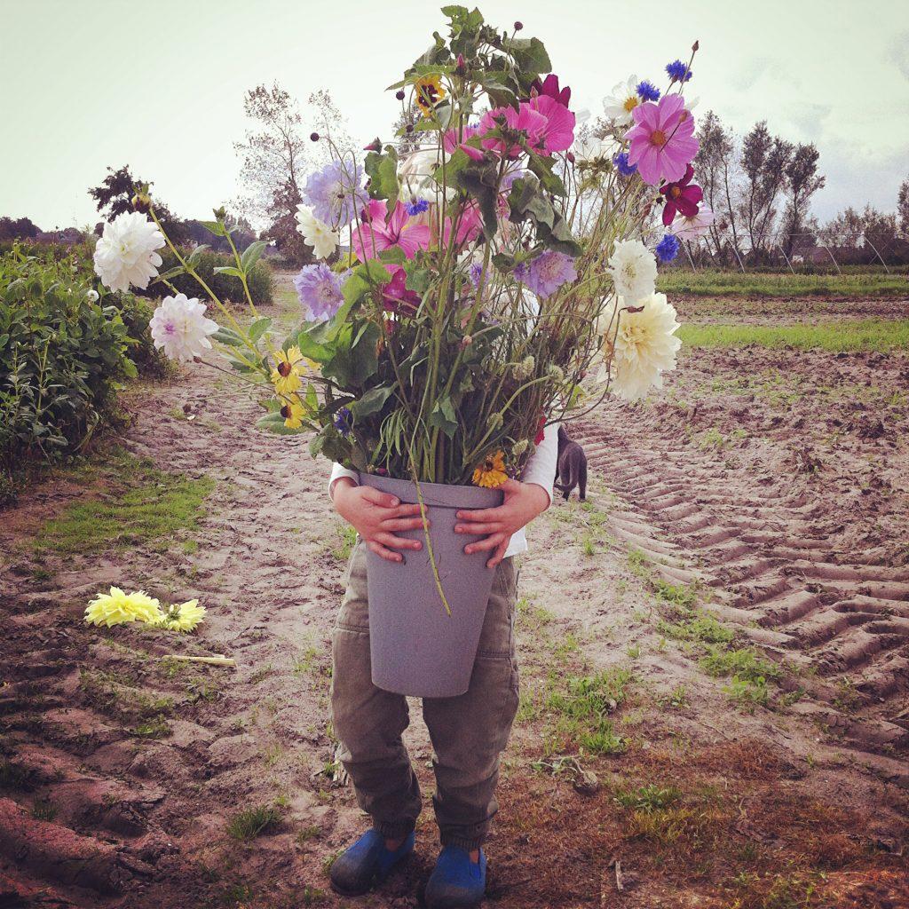 Jongetje met zomerbloemen bij Annemieke's Pluktuin