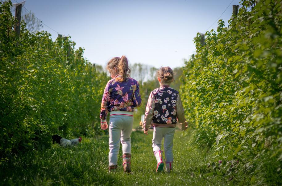 Fruittuin van West meisjes in de boomgaard