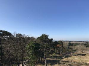 Uitzicht vanaf het Kopje van Bloemendaal