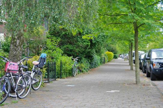 Straat met brede stoep in Haarlem