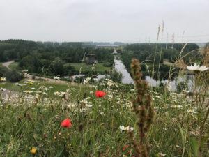 Big Spotters Hill uitzicht