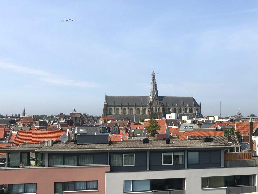 DAKKAS Haarlem uitzicht op de Sint Bavo