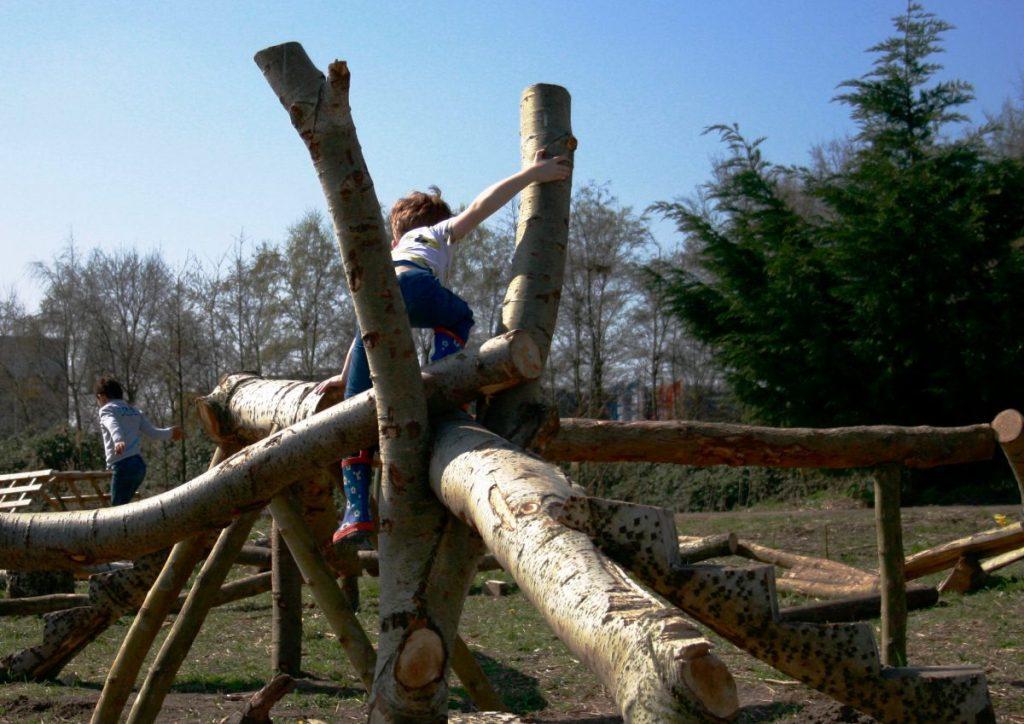 Jongetje klimt op boomstammen