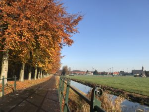 Fietsen langs Elswout in de herfst