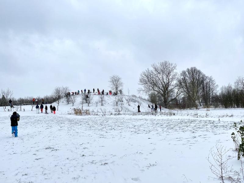 NvS_Speelbos Meermond_winter_sledding 800x600