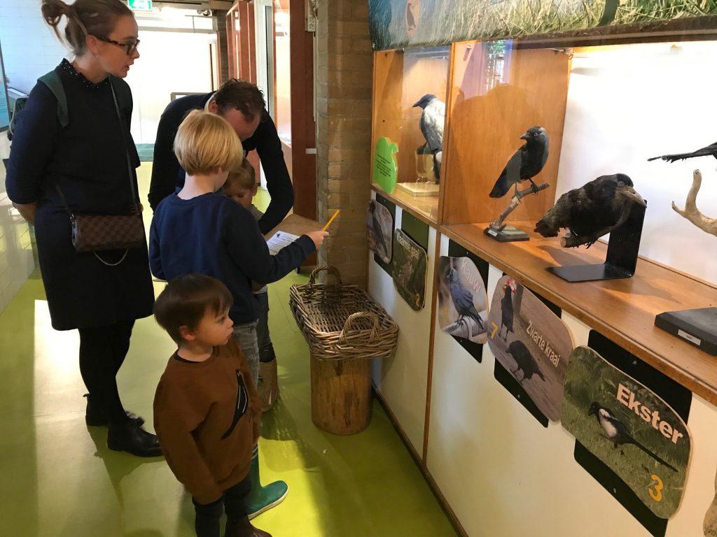 De verborgen vogeltuin in het Pieter Vermeulen Museum
