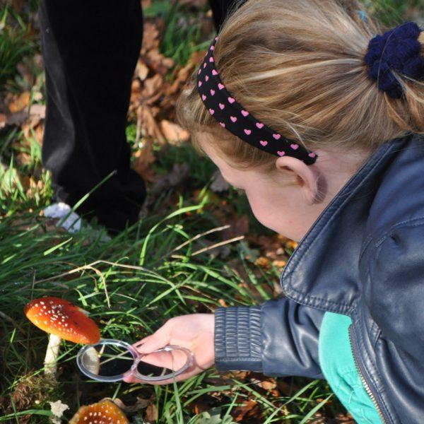 Meisje met paddenstoel