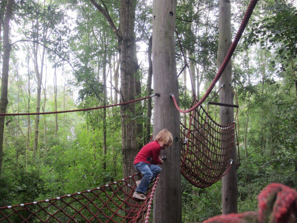Climbing trees at Informatieboerderij Zorgvrij